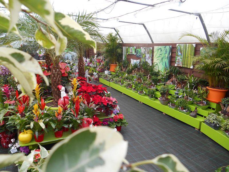 Label Artisan du végétal de EIRL Les Jardins d\'Elise à CHARANTONNAY